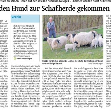Beitrag in der Westdeutschen Zeitung